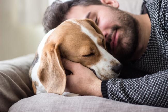Τι μπορούν να μάθουν τα ζώδια από ένα… σκύλο!