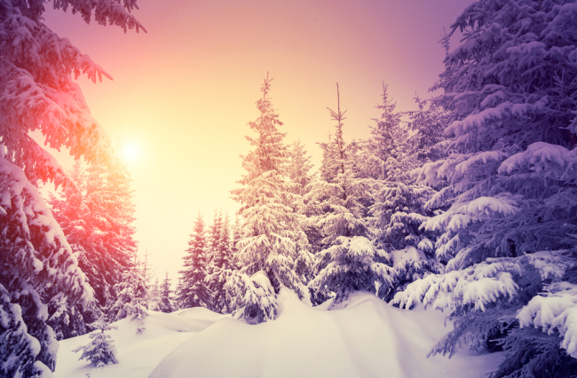 Χειμερινό Ηλιοστάσιο στις 21/12/2016 και προβλέψεις για τα ζώδια.