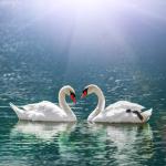 Έρωτας και ελευθερία: Ποια ζώδια δίνουν πιο εύκολα φτερά στον σύντροφό τους για να πετάξει;