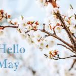 Μηνιαίες αστρολογικές προβλέψεις Μαΐου 2017.